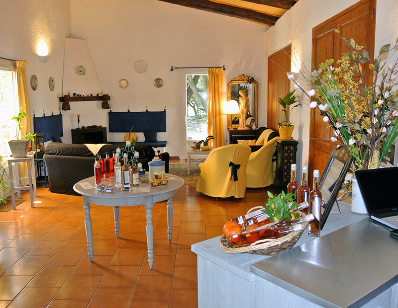 Large reading-room in the Bastide